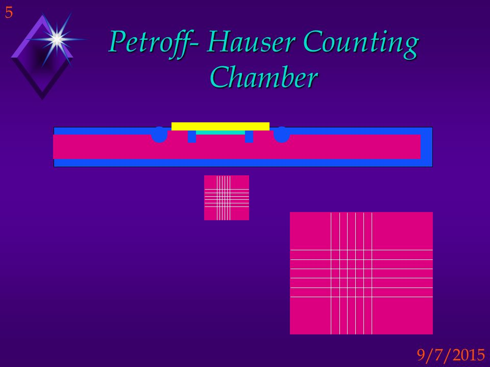 Petroff- Hauser Counting Chamber