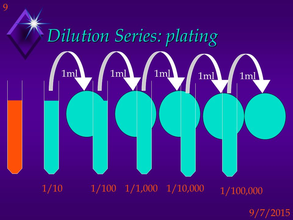 Dilution Series: plating