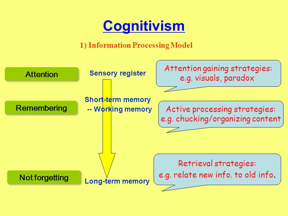 Cognitivism 1) Information Processing Model