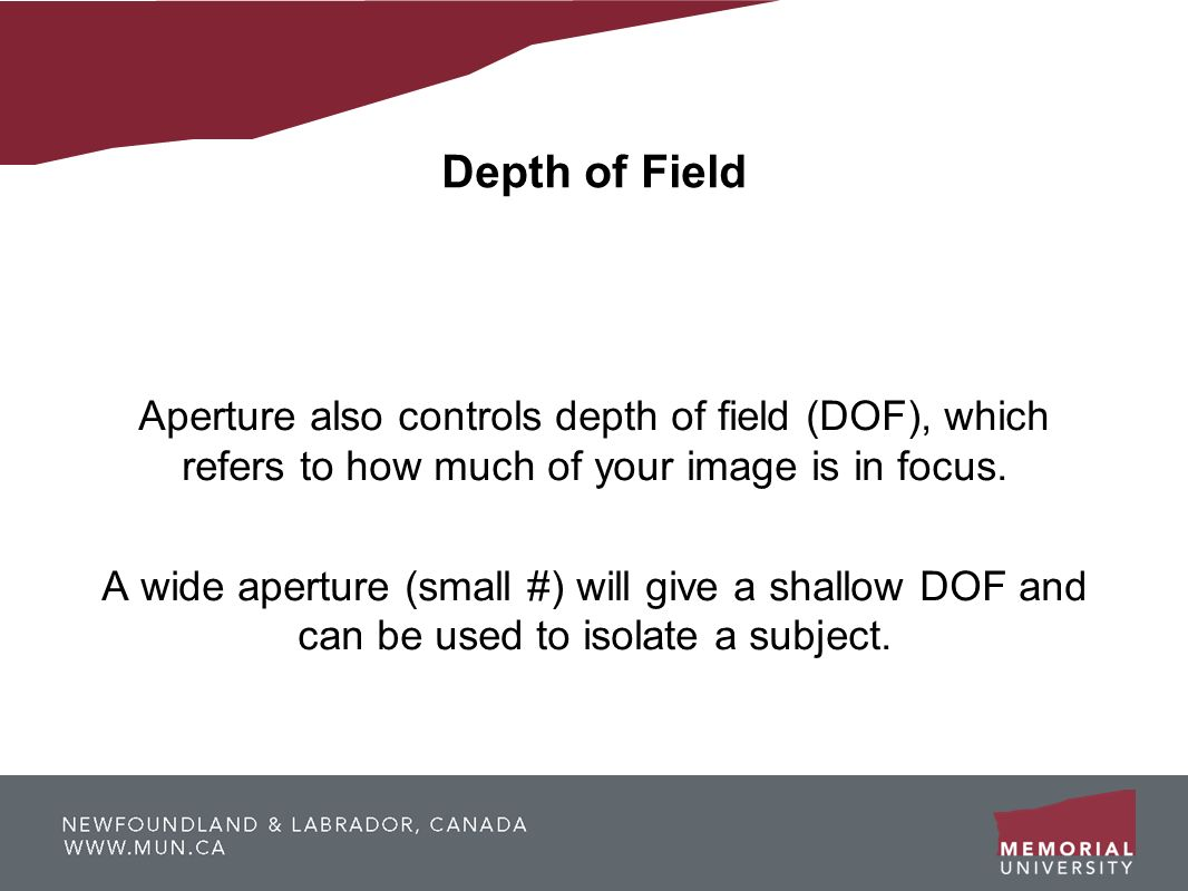 Depth of FieldAperture also controls depth of field (DOF), which refers to how much of your image is in focus.