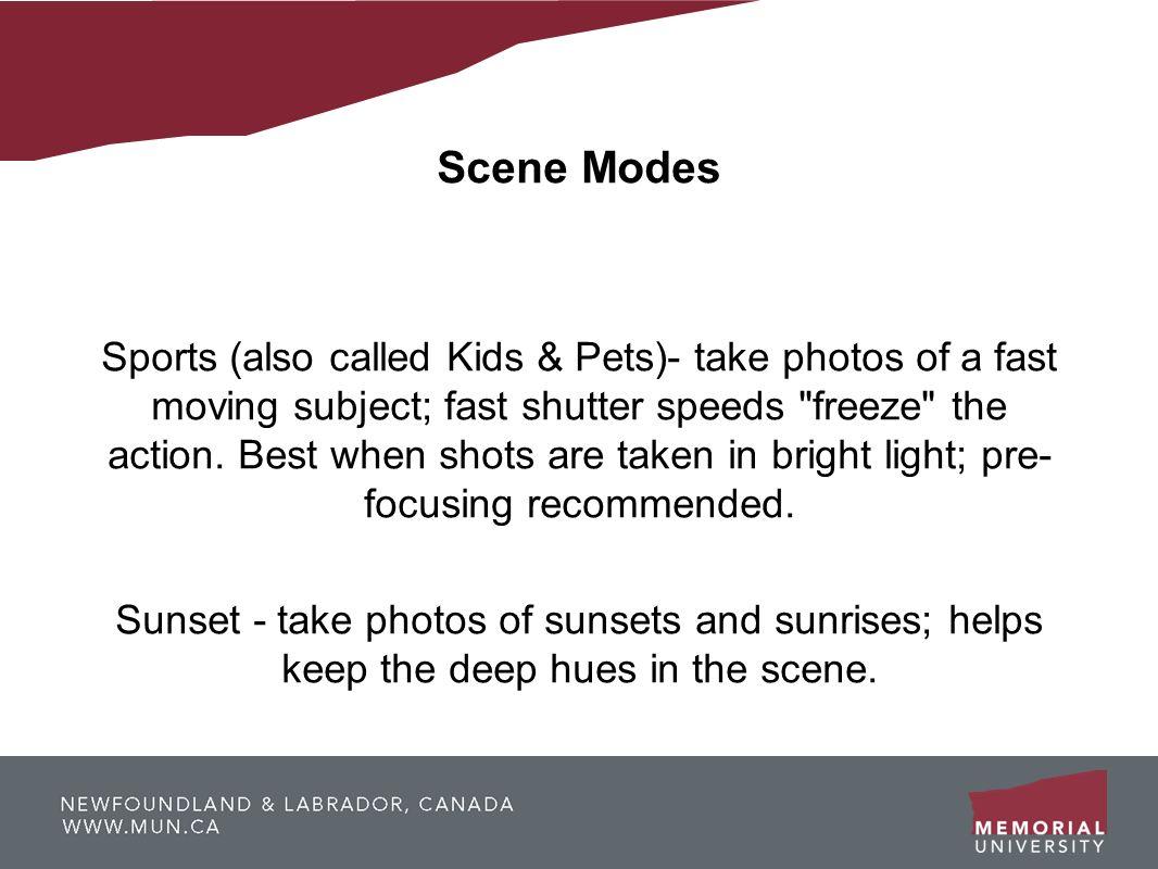 Scene Modes