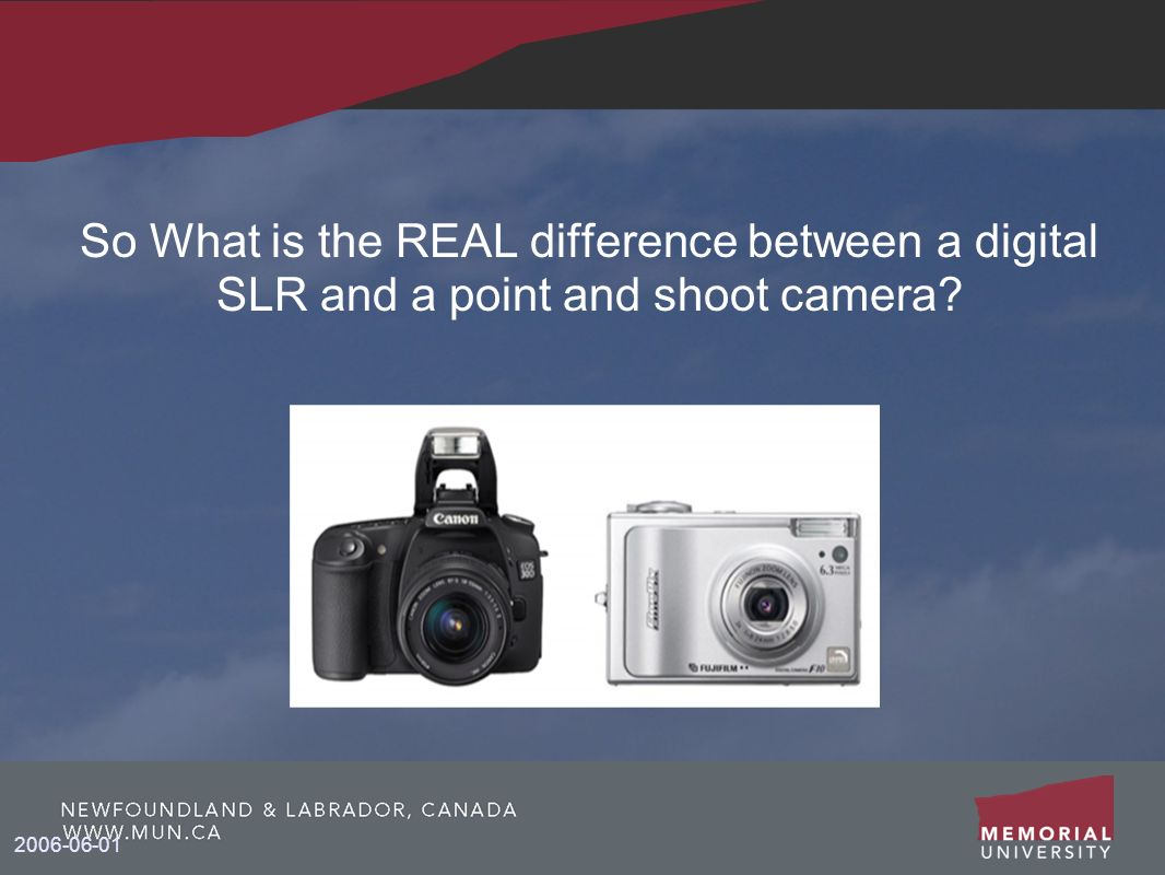 So What is the REAL difference between a digital SLR and a point and shoot camera