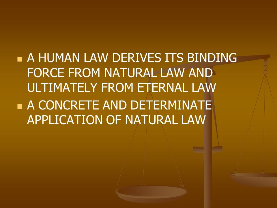 how natural laws are becoming human laws Natural law definition, a principle or body of laws considered as derived from  nature, right reason, or religion and as ethically binding in human society.