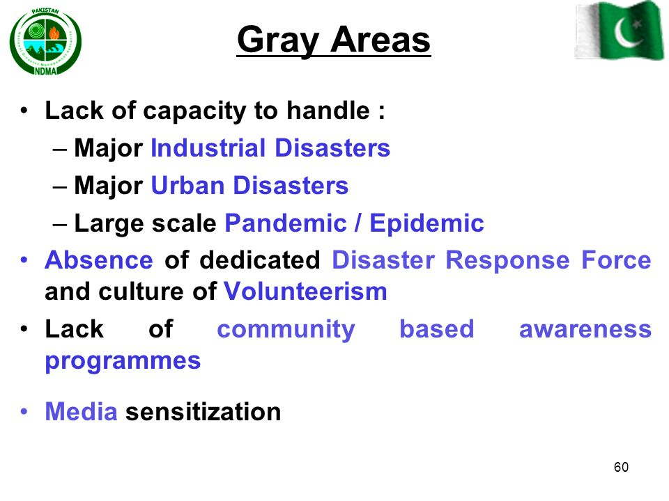 Gray Areas Lack of capacity to handle : Major Industrial Disasters