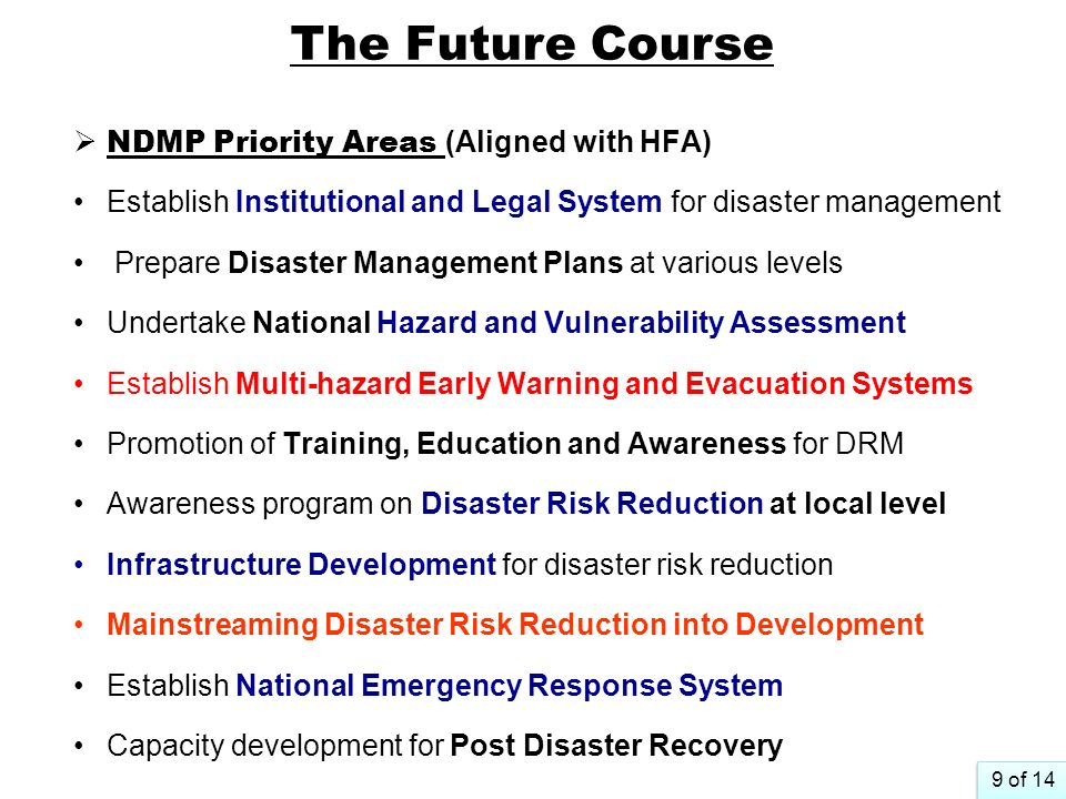 The Future Course NDMP Priority Areas (Aligned with HFA)