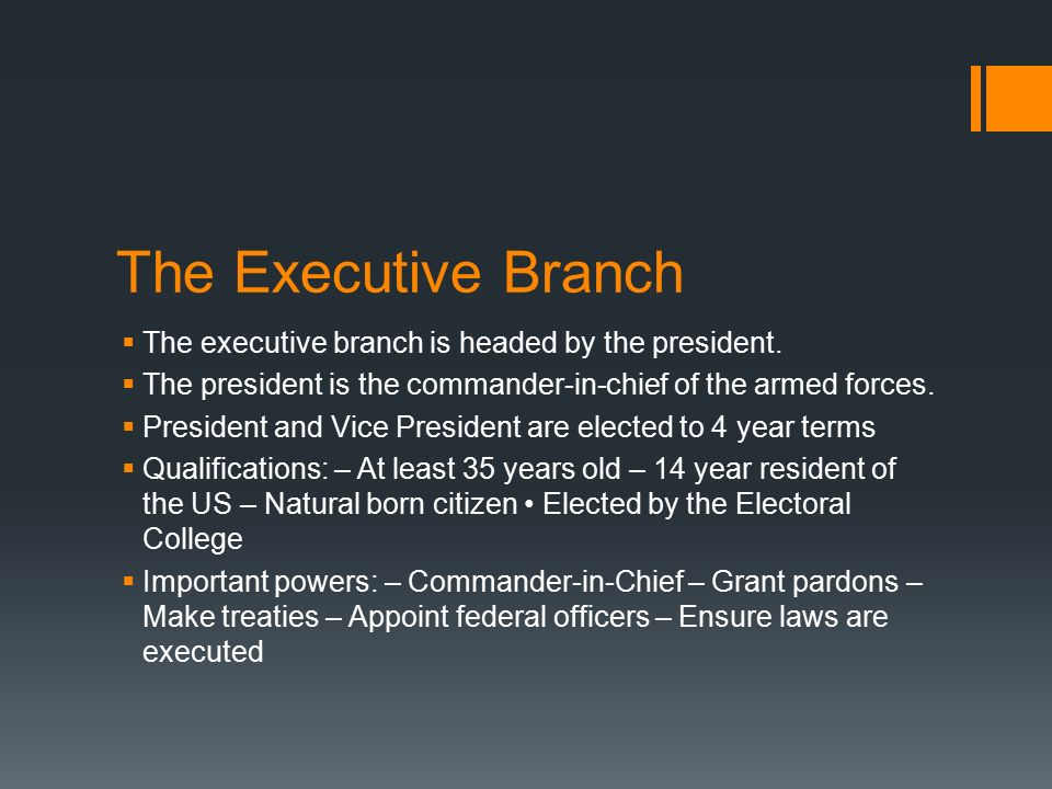 The Executive Branch The executive branch is headed by the president.