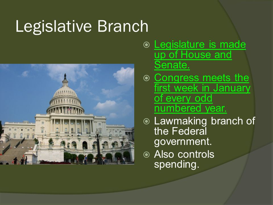 Branches of Government...