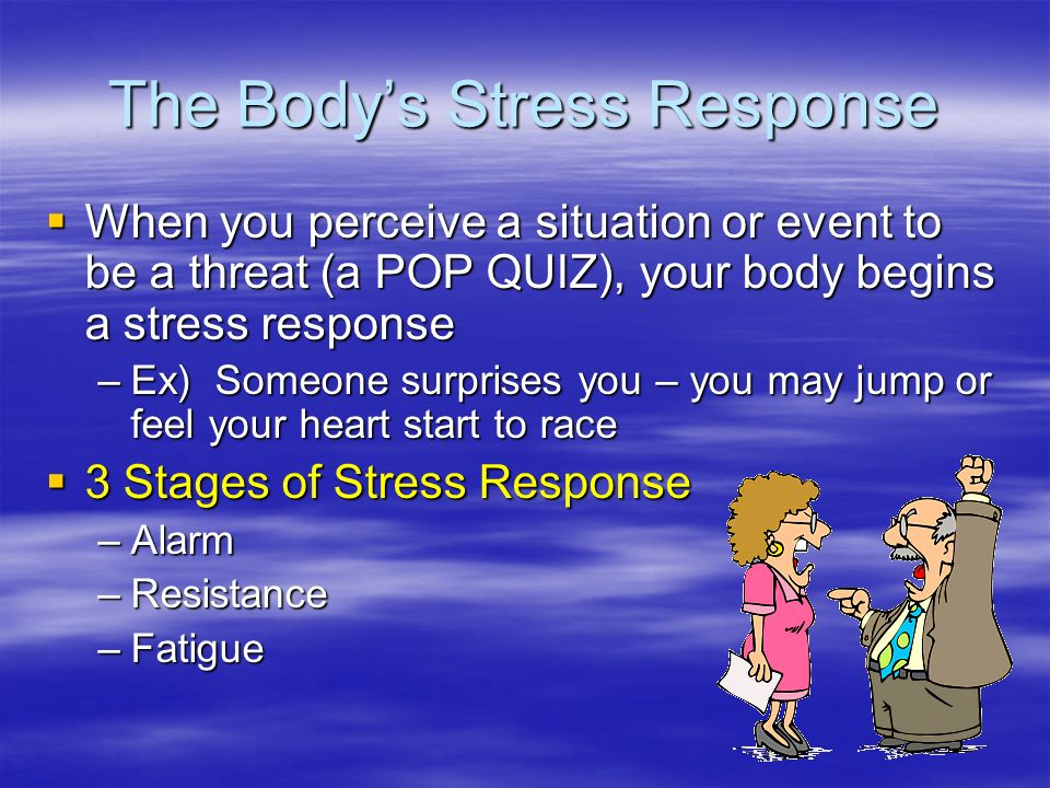 The Body's Stress Response