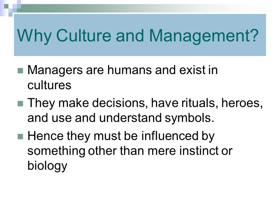 Why Culture and Management