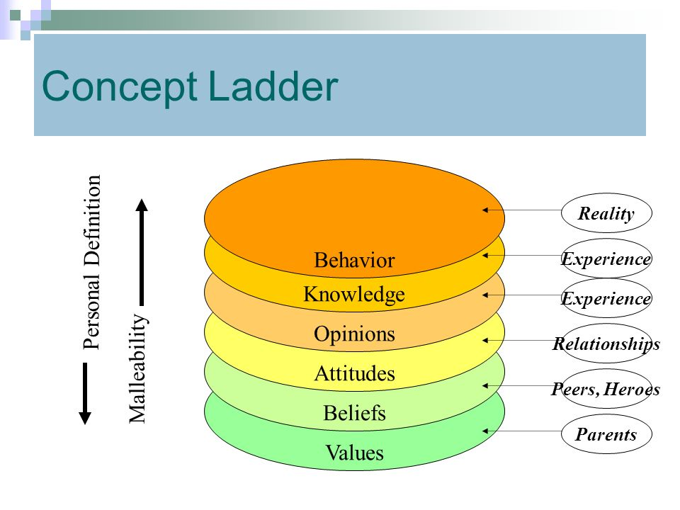 Concept Ladder Behavior Personal Definition Knowledge Opinions
