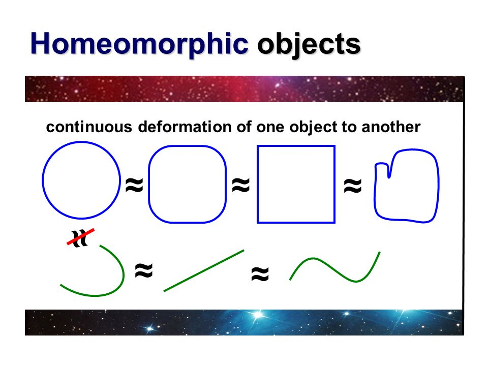 ≈ ≈ ≈ ≈ ≈ ≈ Homeomorphic objects