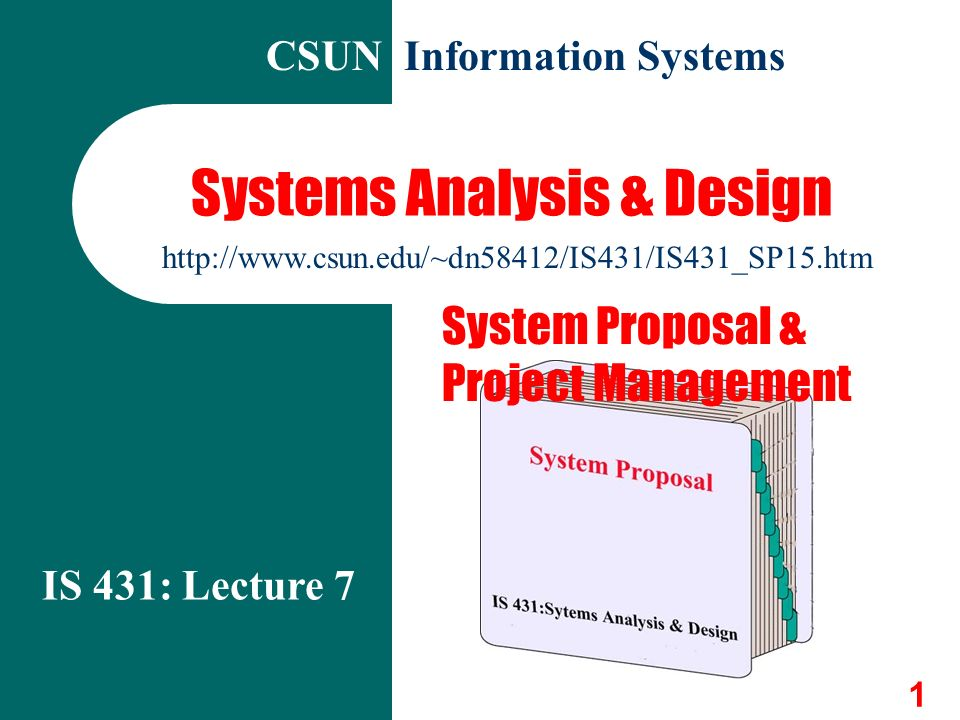 Riordan Manufacturing: Information System Proposal Essay Sample