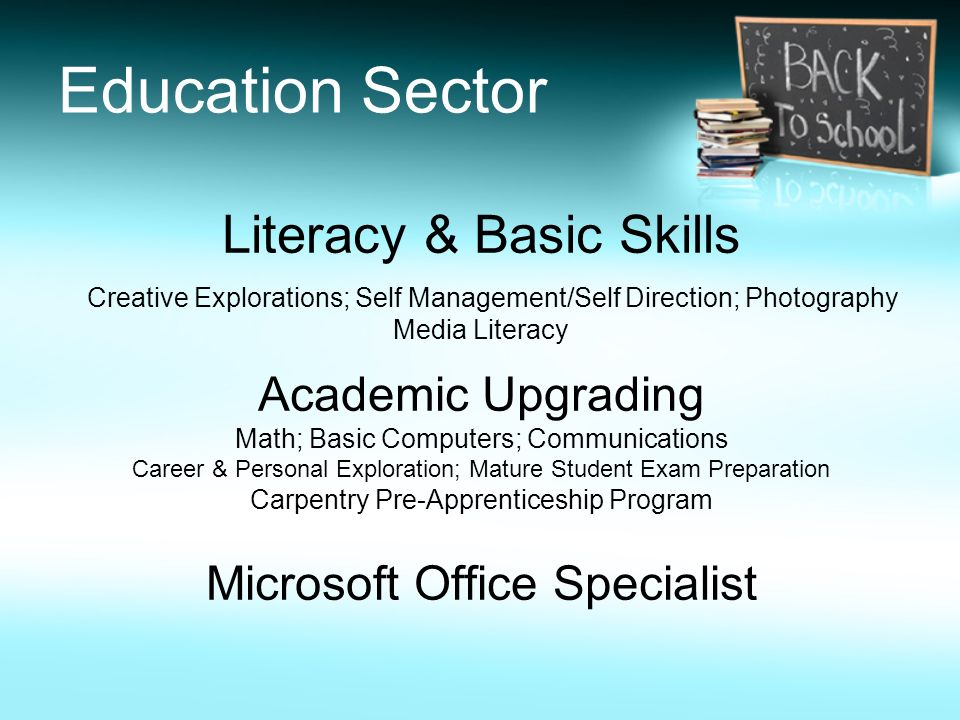 Education Sector Literacy & Basic Skills Academic Upgrading