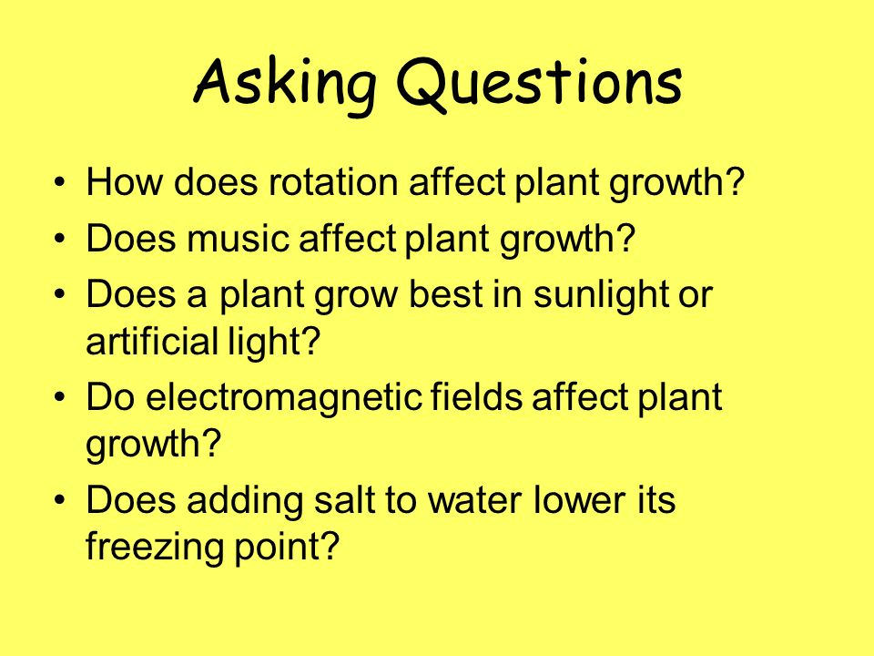 music affect the growth of a plant essay Objective of the present experiment is to study the effect of different types of music (indian classical  actually has a detrimental effect on the plant growth.