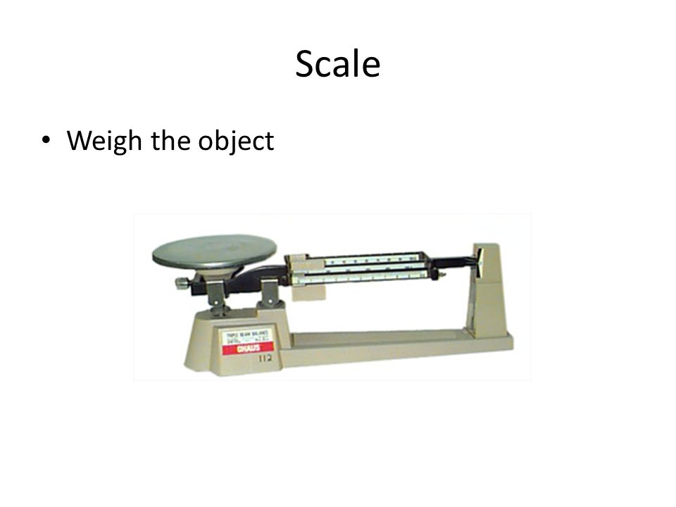 Scale Weigh the object