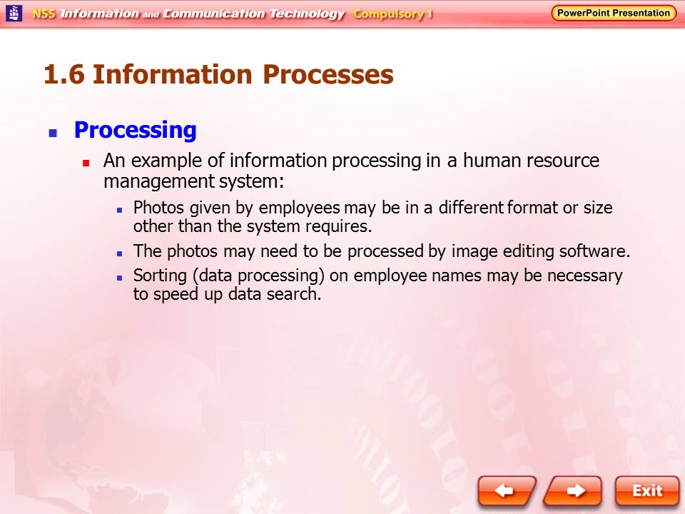 1.6 Information Processes