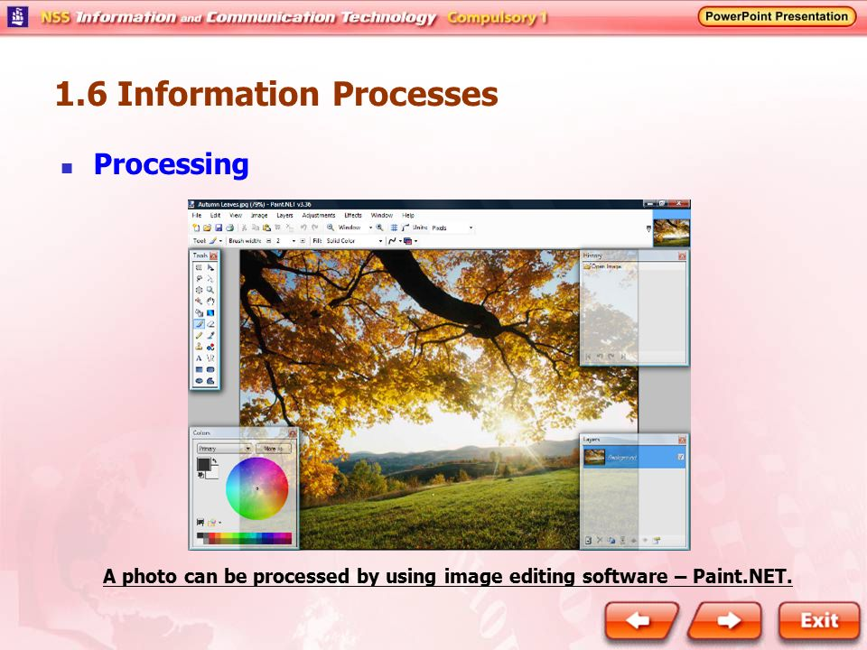 A photo can be processed by using image editing software – Paint.NET.