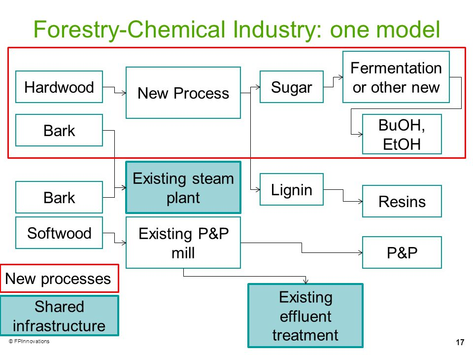 Forestry-Chemical Industry: one model