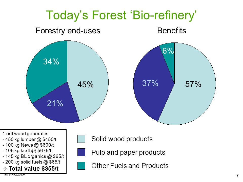 Today's Forest 'Bio-refinery'