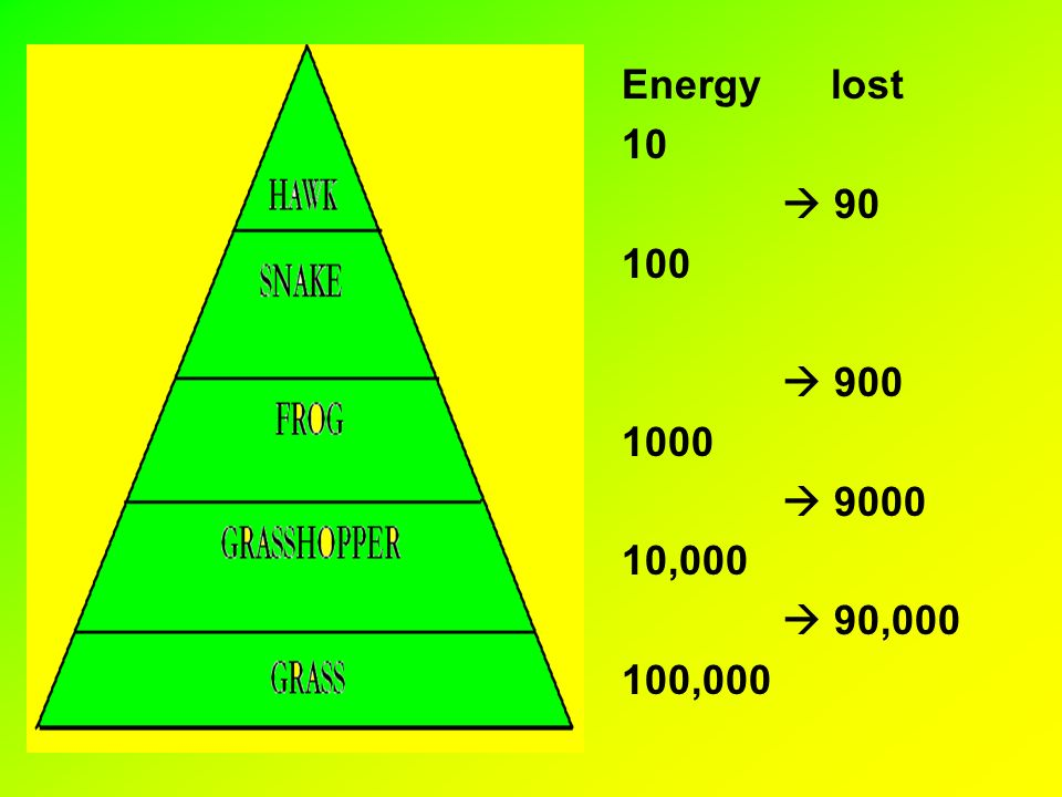 Energy lost 10    ,000  90, ,000