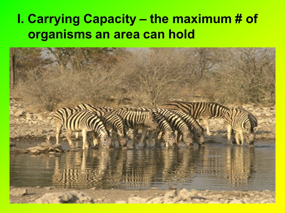I. Carrying Capacity – the maximum # of organisms an area can hold