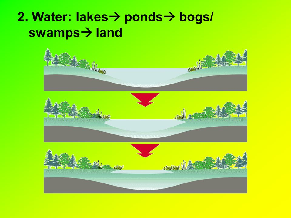 2. Water: lakes ponds bogs/ swamps land