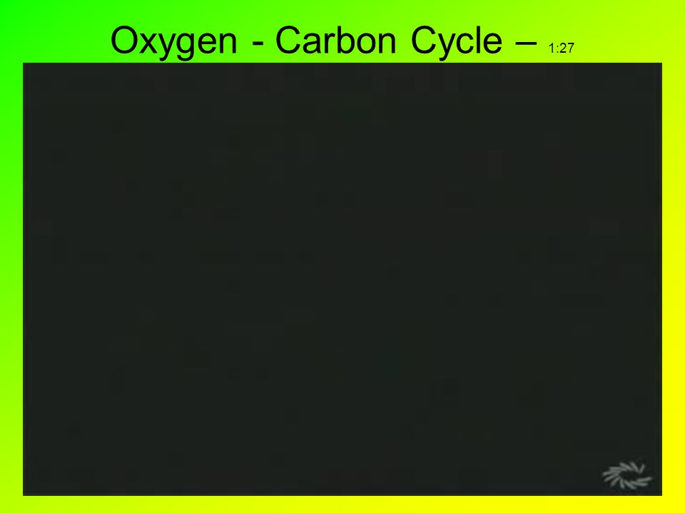 Oxygen - Carbon Cycle – 1:27