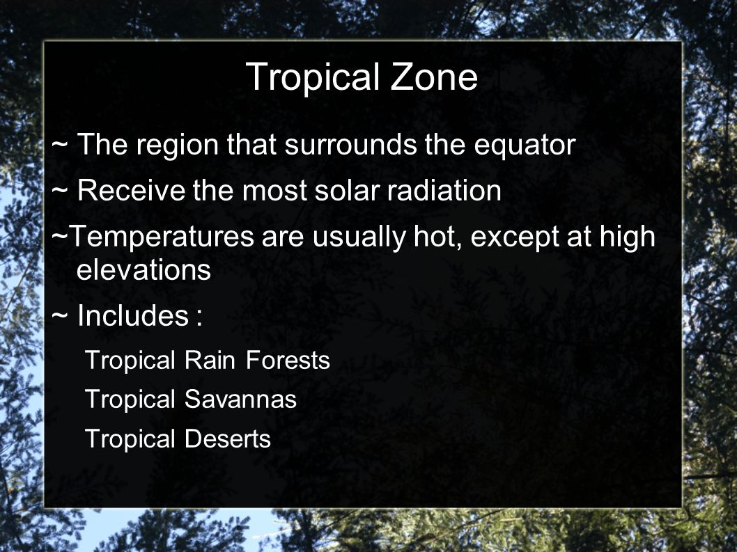 Tropical Zone ~ The region that surrounds the equator