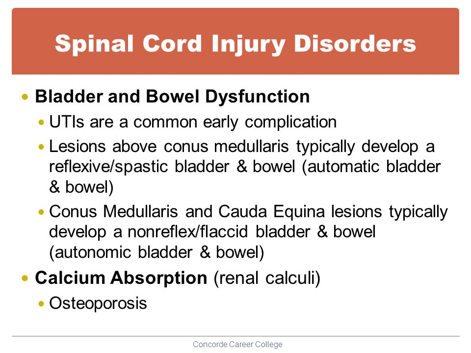 spinal cord injuries in adapted physical