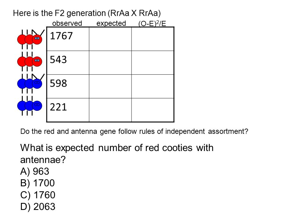 1767 543 598 221 What is expected number of red cooties with antennae