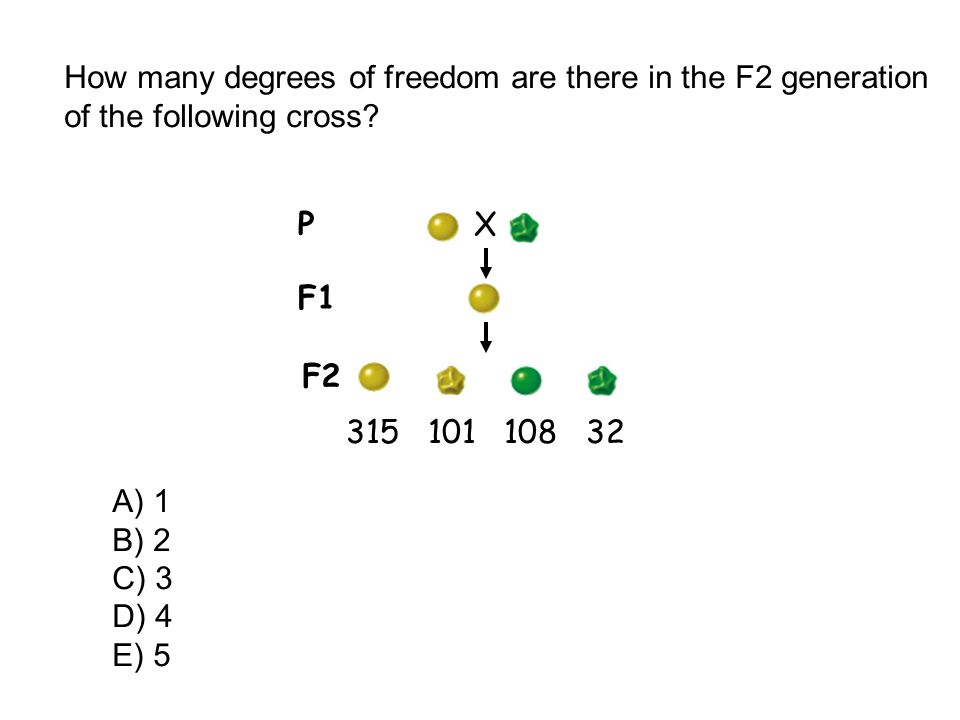 How many degrees of freedom are there in the F2 generation