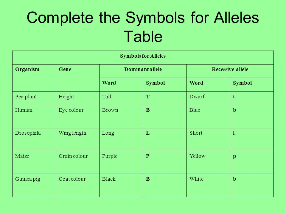 Dominant And Recessive Alleles Chart GENETICS The nu...