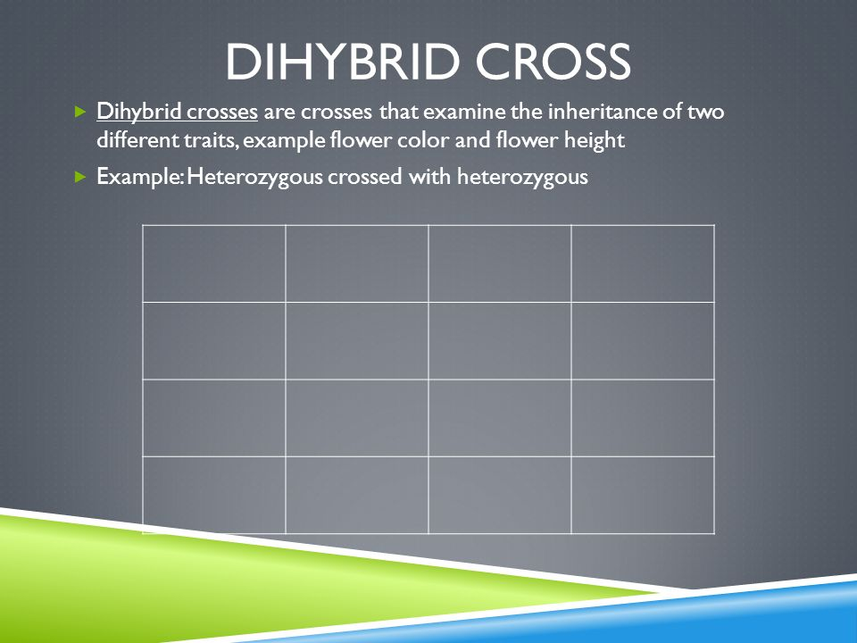 Dihybrid cross Dihybrid crosses are crosses that examine the inheritance of two different traits, example flower color and flower height.