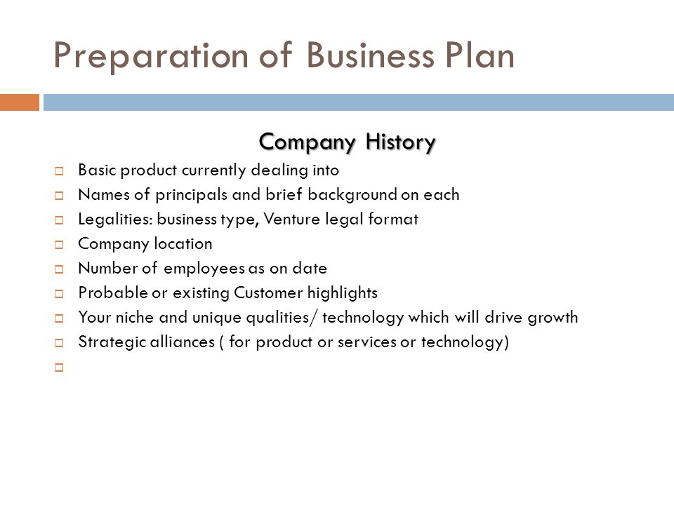 business plan preparation services