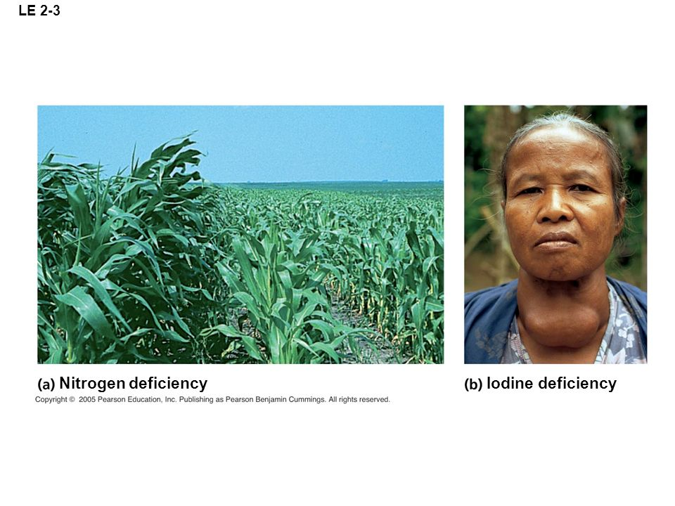 LE 2-3 Nitrogen deficiency Iodine deficiency