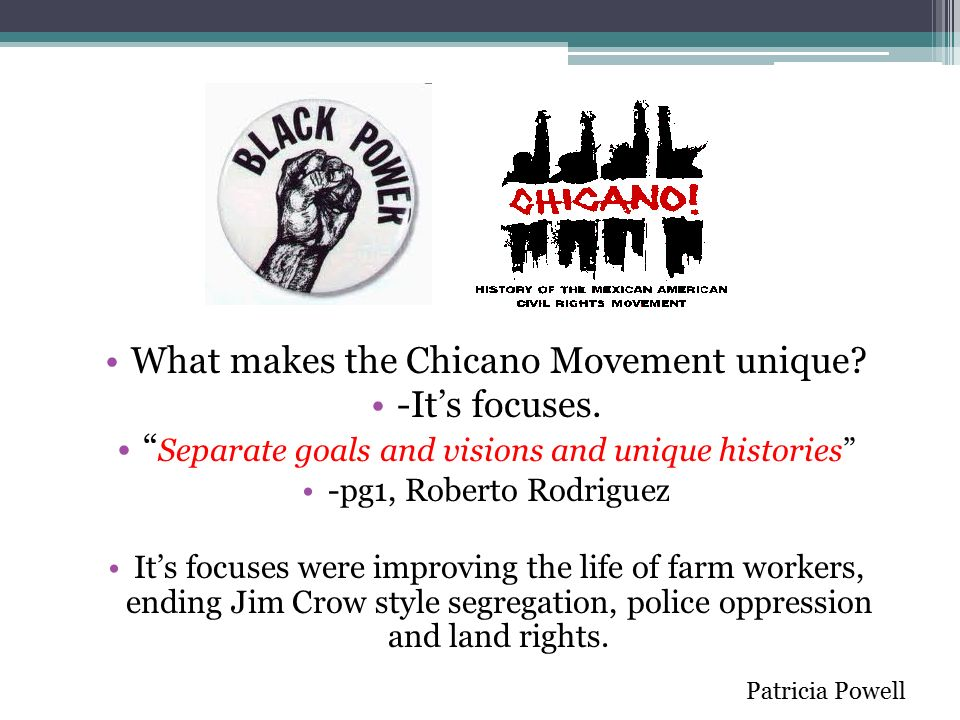 chicano movements essays The chicano movement of the 1960s  similarly, novels, poetry, short stories, essays and plays have flowed from the pens of contemporary chicano writers.