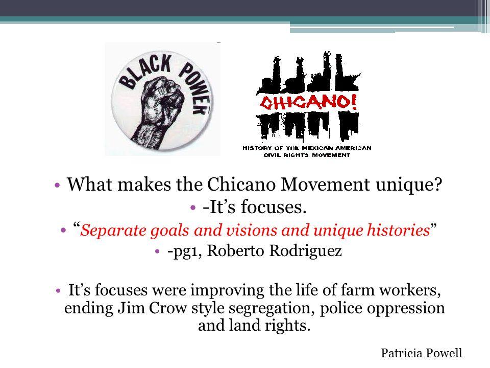 chicano mexican american movement essay