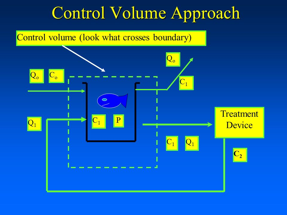 Container Volume Control : Mass balances loading rates and fish growth ppt download