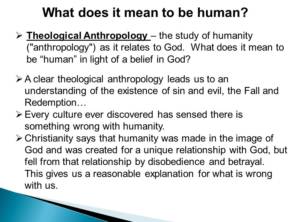what does it mean to be human What does it mean to be human paul coulter examines the scriptural evidence for what a human being is, starting with genesis correcting two misrepresentations.