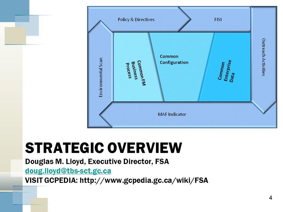 STRATEGIC OVERVIEW Douglas M. Lloyd, Executive Director, FSA doug