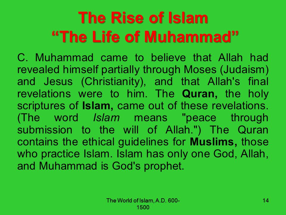 muhammad and the rise of islam The prophet muhammad ( peace be upon him ) is the founder of islam when he was ordered by almighty god to reveal the holy quran and all muslims should follow the instructions and directions stated in the holy quran,the prophet muhammad ( peace be upon him ) is the founer of the first islamic state which rose in al madina in sudai arabi now.