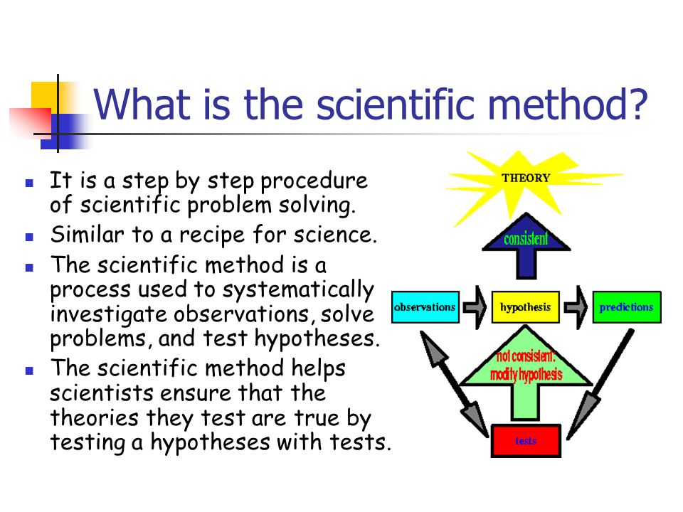 what is the relationship between theories hypotheses and scientific method