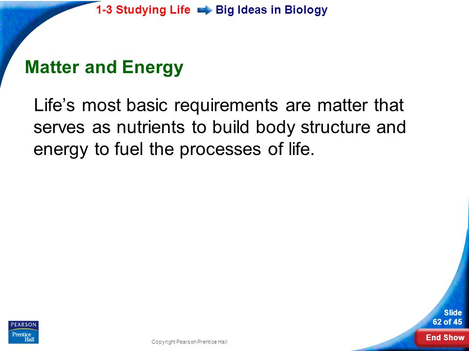 Big Ideas in Biology Matter and Energy.