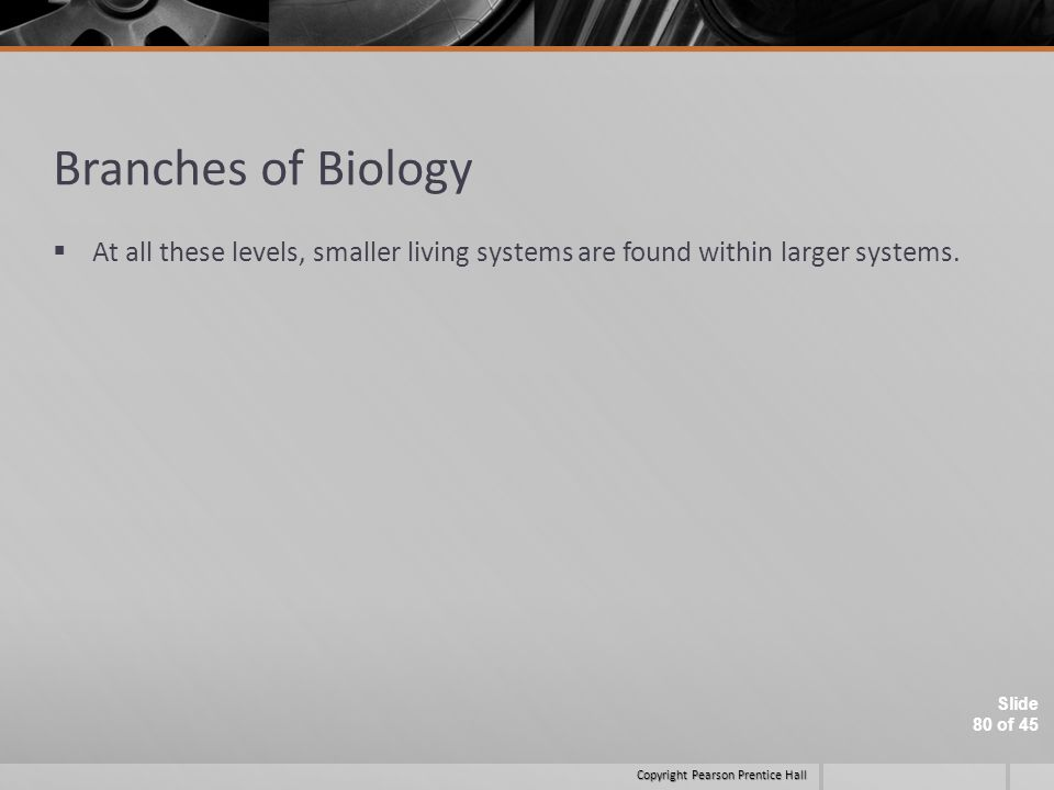 Branches of Biology At all these levels, smaller living systems are found within larger systems.