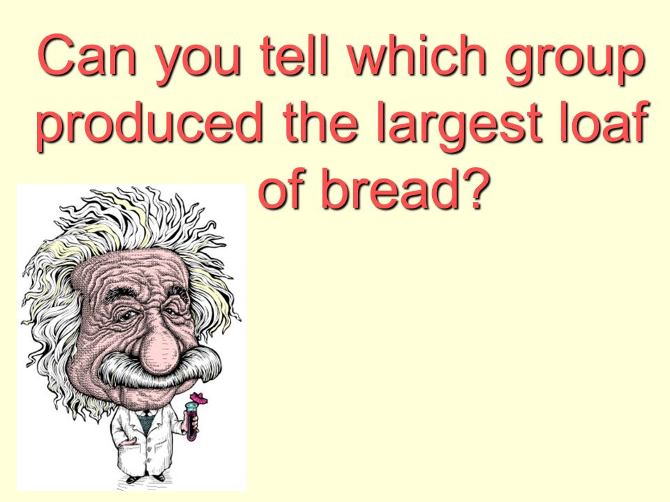 Can you tell which group produced the largest loaf of bread