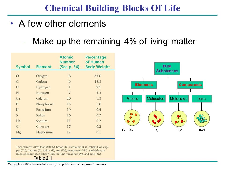 Chemical Building Blocks Of Life