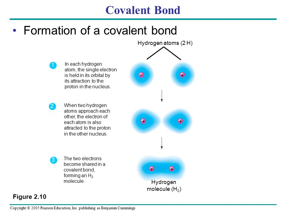 Formation of a covalent bond