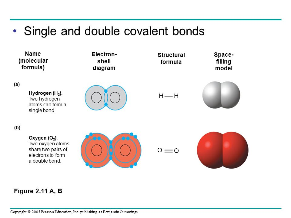 Single and double covalent bonds