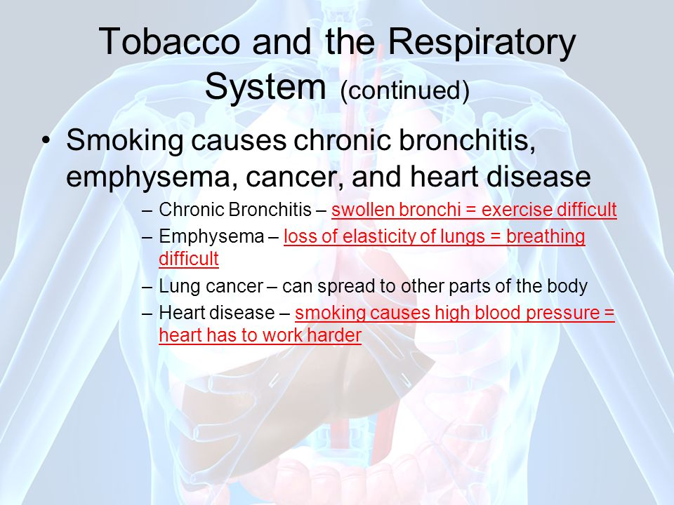 Tobacco and the Respiratory System (continued)