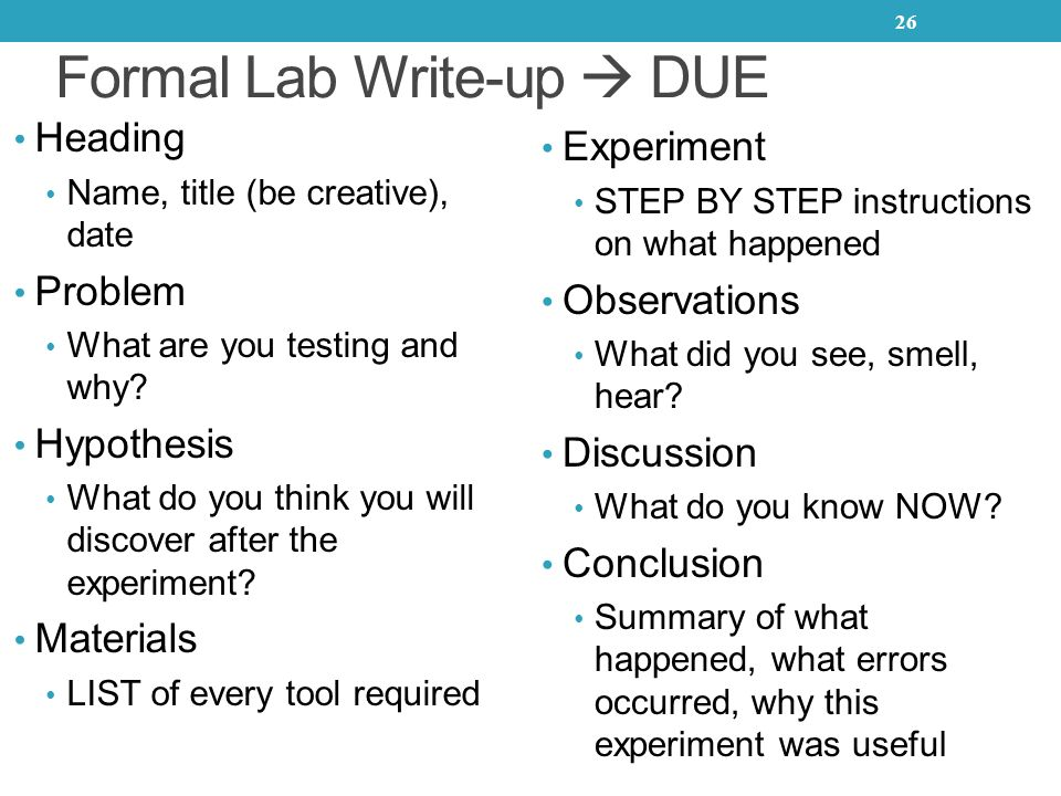 lab report write up
